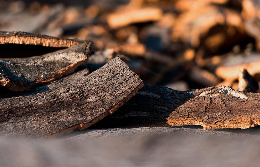 软木原材料即栓皮栎树皮的晾晒-葡萄牙软木协会图片库